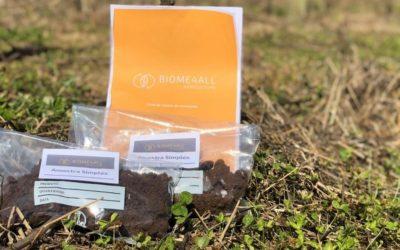 Startup traz para o Brasil tecnologia inédita de análise genética do solo